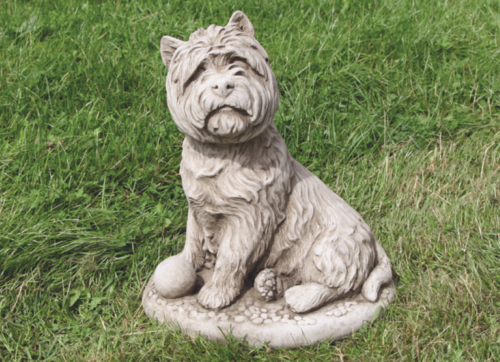 Grote West Highland Terrier